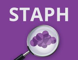 Staphylococcus